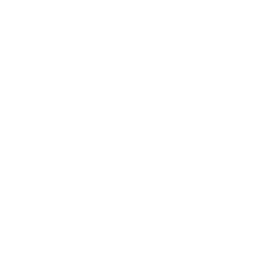 logo Nadia Innocentia wit